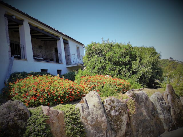 b & b tra le rocce in CostaSmeralda - Arzachena - Bed & Breakfast