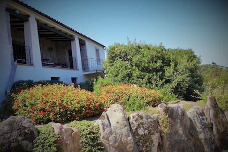 b & b tra le rocce in CostaSmeralda - Arzachena - Bed & Breakfast