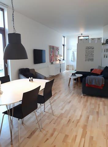 Lækker lejlighed tæt på Køge