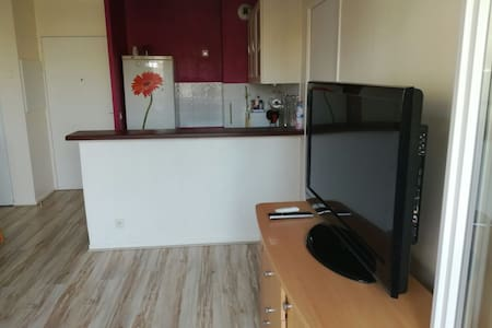 Appartement Cosy au Bourget - Le Bourget - Квартира