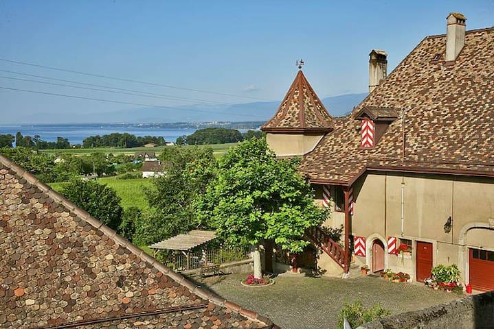 Une chambre vigneronne au Château! - Allaman - Schloss
