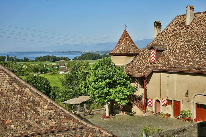 Une chambre vigneronne au Château! - Allaman - Zamek