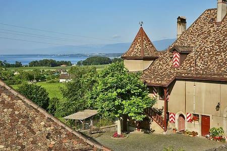 Une chambre vigneronne au Château! - Allaman - Istana