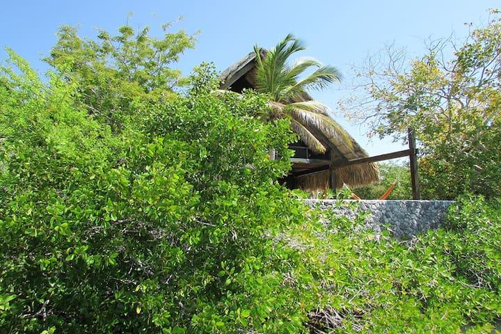 Paradisíaca isla en Cholon! - Barú - Haus
