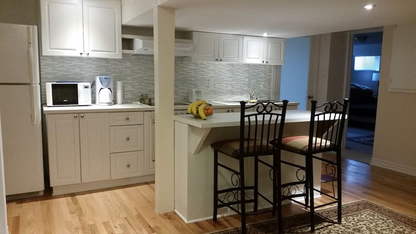 Private, peaceful apartment near the airport - Ottawa - Flat