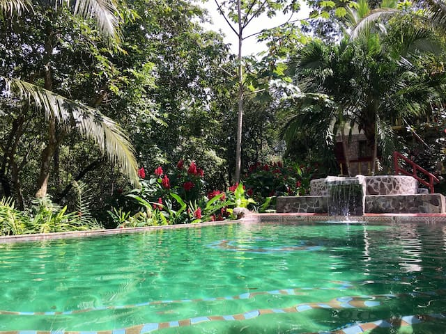 Jungle apt, tropical garden & refreshing pool!
