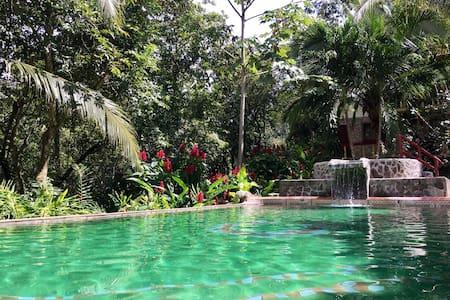 Jungle apt, tropical garden & refreshing pool! - Manuel Antonio