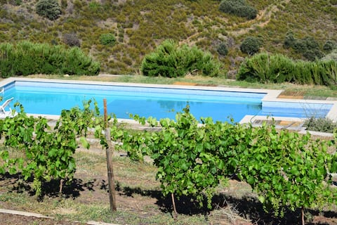 House 3 rooms Douro River