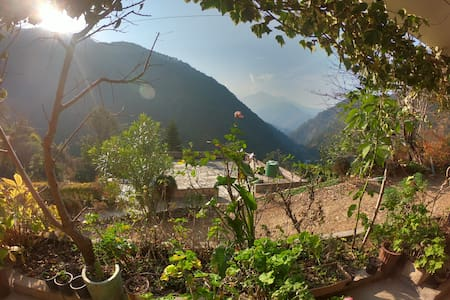 Shiva homestay, Serene, Home cooked food available