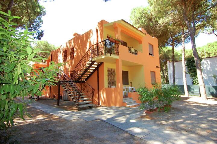 Modern Apartment in Rosolina near Sea