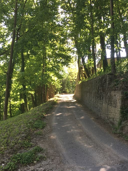 Chemin d'accès du portail aux parking.
