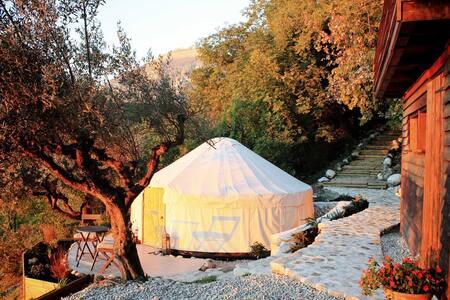 Olive Blossom Yurt - Fireflies and Figs - Tufillo - 유르트(Yurt)