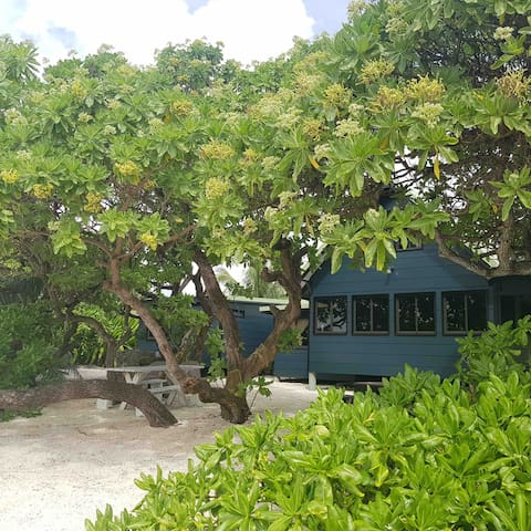 The Beach House - Moorea Island