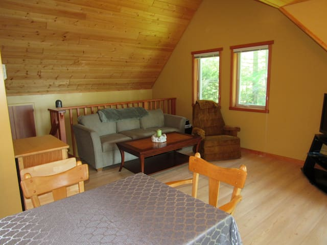 Step Free entrance to Bright Clean Living Room with Vaulted Ceiling.   Queen sized hidebed linens included. TV and Wifi AND INTERNET included