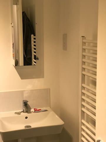 Modern bathroom /heated towel rail