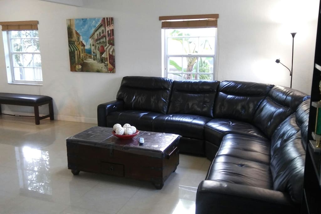 Living Room with new leather sofa.
