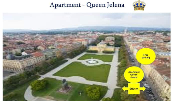 Apartment - Queen Jelena - Down town,free parking,