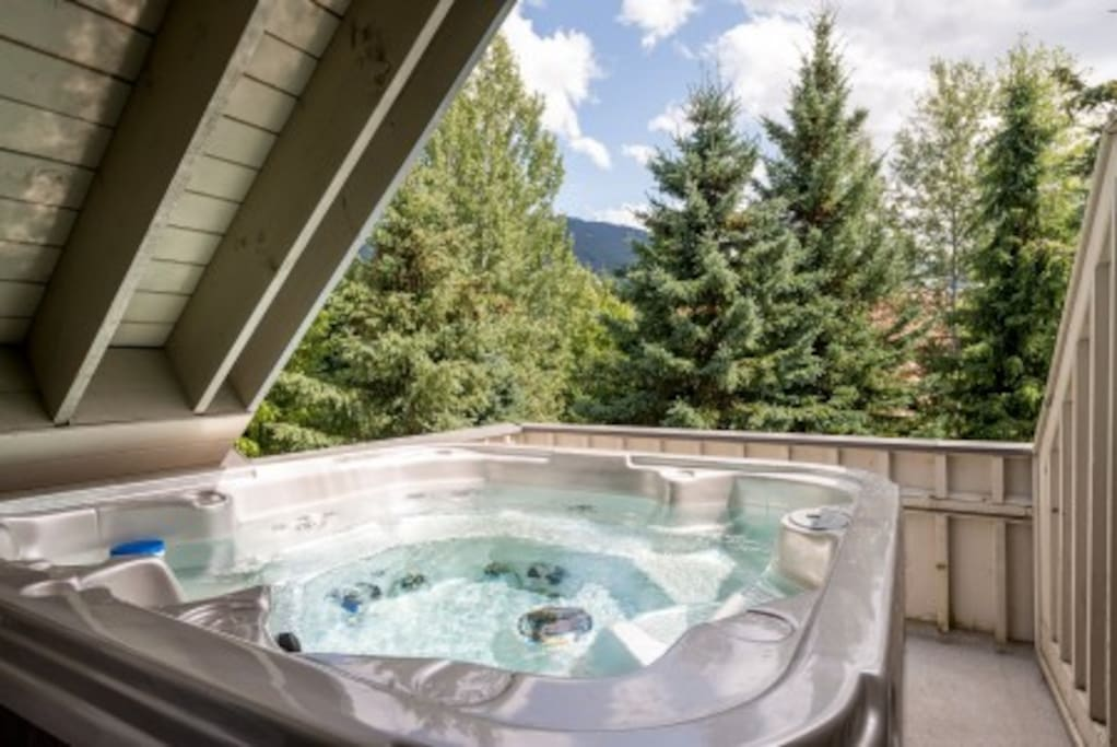 Brand new private 6 person Hot Tub off of Master Bedroom.