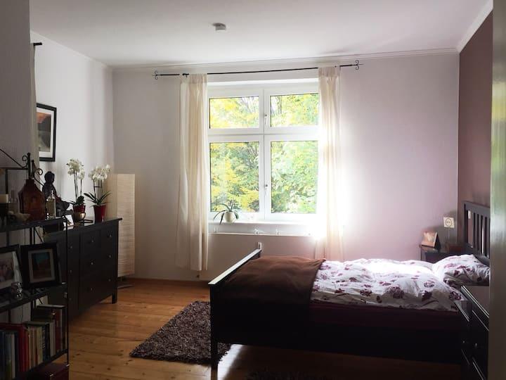 Helles 5 ZKB, 120 qm-Apartment mit Garten TR-City