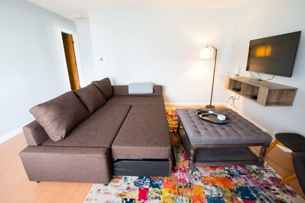 Pullout couch (sheets/duvet/pillows too)