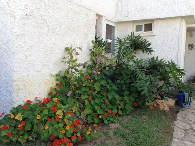 Sunny room in a nice house - Herzliya