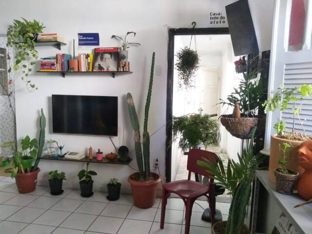 Casa no Centro do Recife -  Perto de tudo!