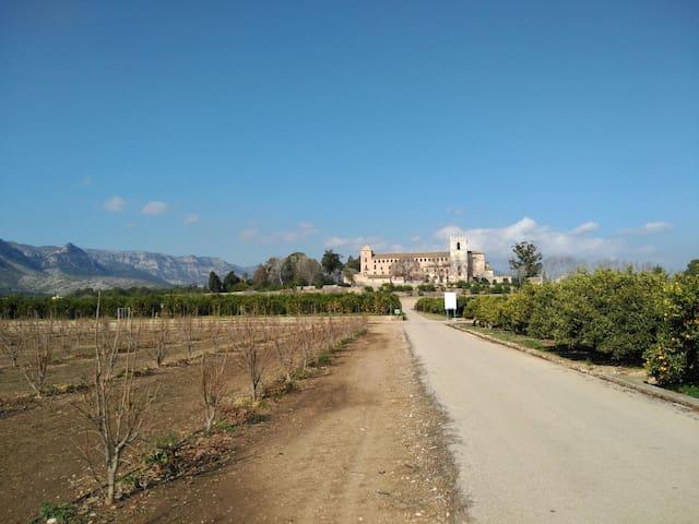 Ancient Monasteries