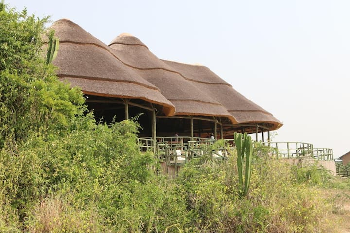 Kasenyi Safari Camp - Kasenyi - Nature lodge