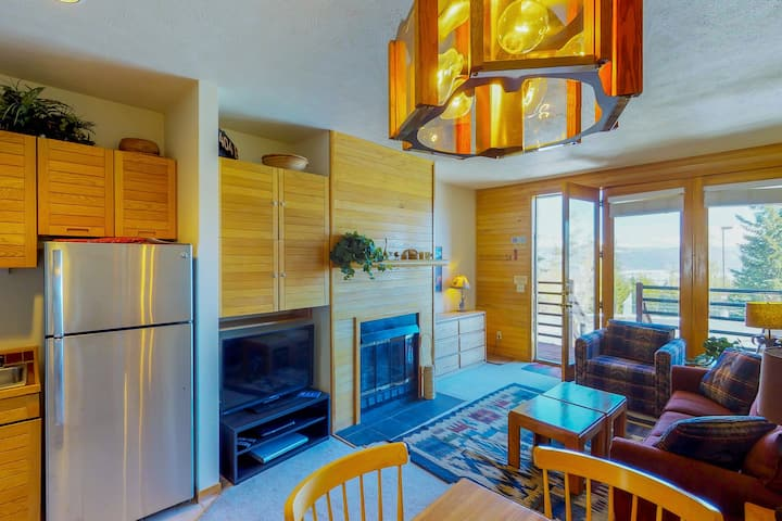 Comfy condo w/ gas fireplace, Internet, and sofabed - close to trails!