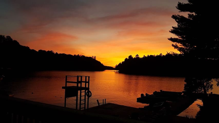 Peaceful Lake Front Premium Cottage 5