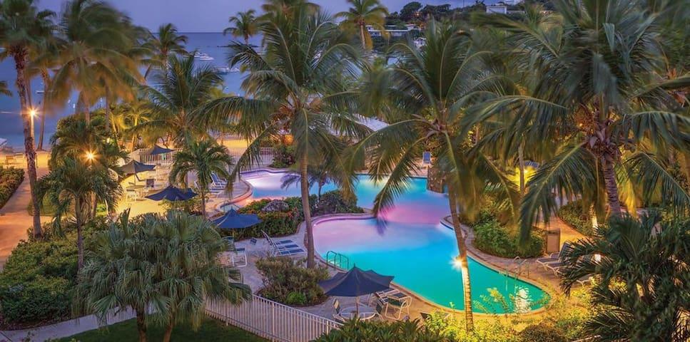Palm Breeze, Amazing Views with Pool, Hot Tub, Restaurant, Beach, Washer, Dryer, Roku and WiFi.