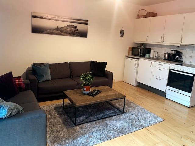 Cozy 2 rooms apartment, close to city center
