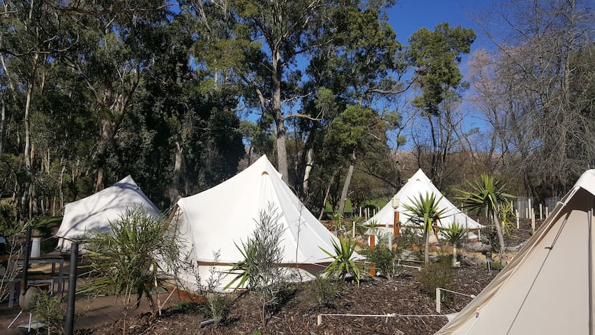 Glamping Couples Retreat, Halls Gap Lakeside