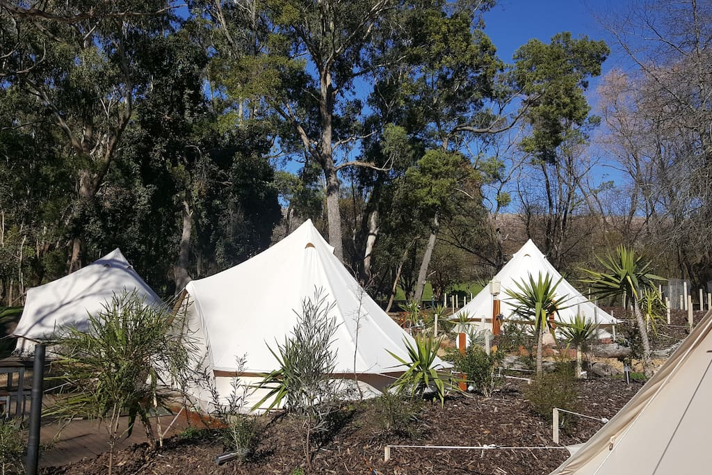 Glamping in the Grampians