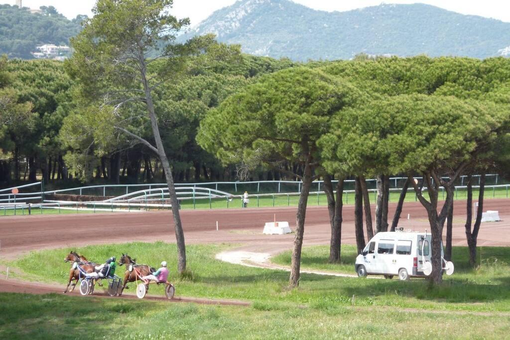 Le champ de course : un cadre reposant