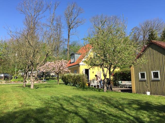 Yndigt Skagenshus - Aalborg - Huis