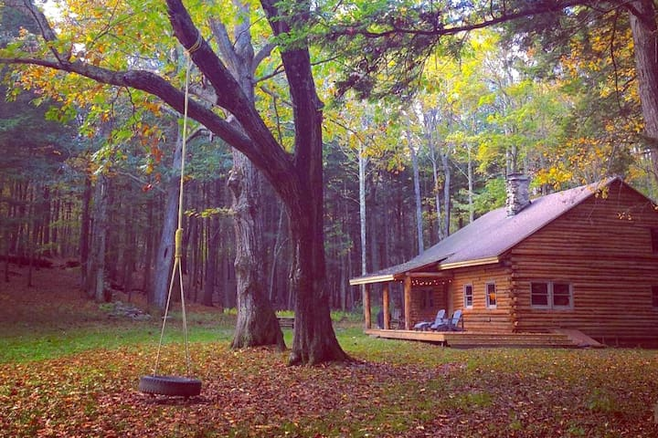 Catskills Secluded Log Cabin