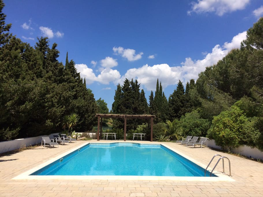 Swim and sunbathe in absolute privacy.  Pool is professionally cleaned & ph controlled twice weekly.