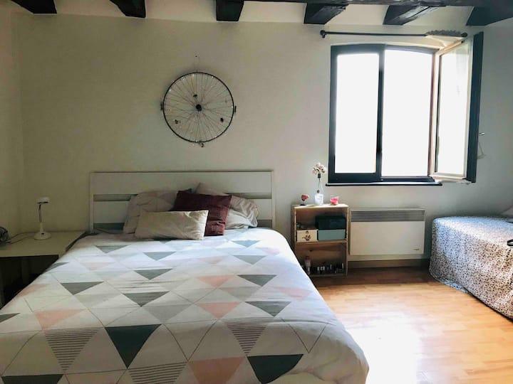 Cosy appartement au centre ville de Strasbourg
