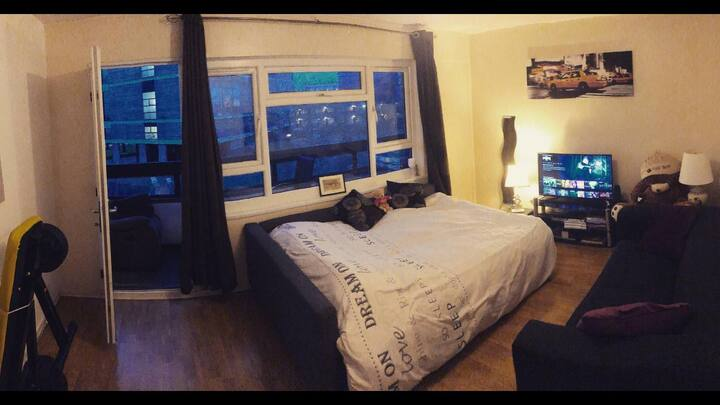 Wonderful Room in center London Canada Water