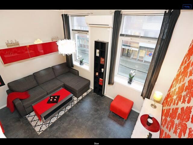 Koselig liten leilighet sentralt i Kvadraturen