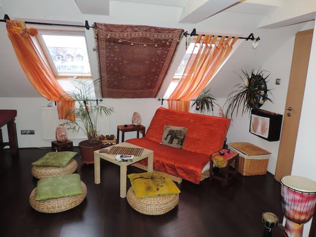 Relax room v centru města - Karlovy Vary - Apartment