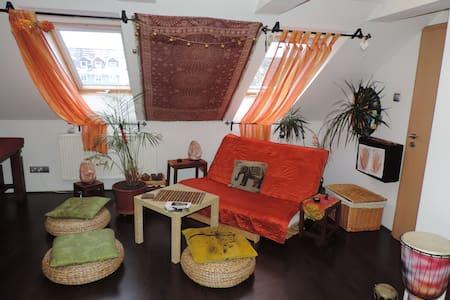 Relax room v centru města - Karlovy Vary - Wohnung