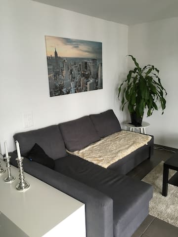 Luxus Schlafsofa Rheinfelden Basel - Rheinfelden - Apartment