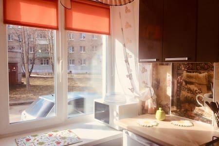 Квартира с новой мебелью в Центре города