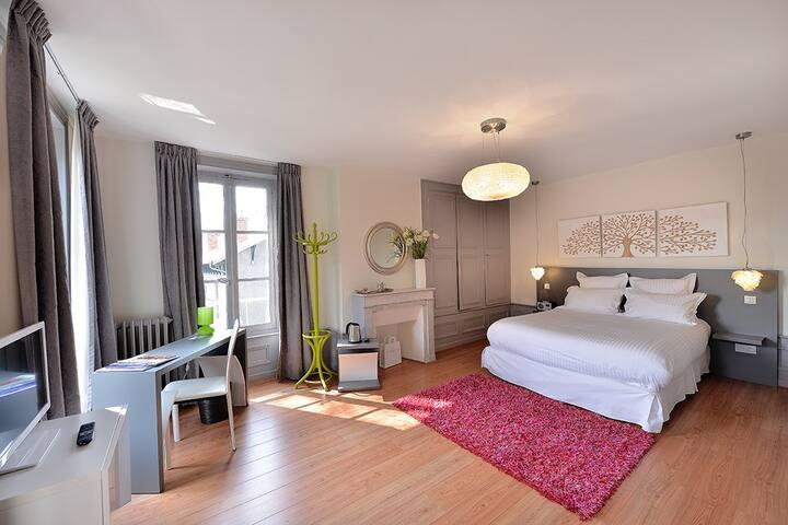Chambre Cocoon, Villa Pascaline, centre ville. - Clermont-Ferrand - Bed & Breakfast