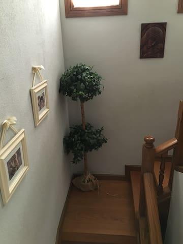Magnifica casa independiente - Plasencia - Ev