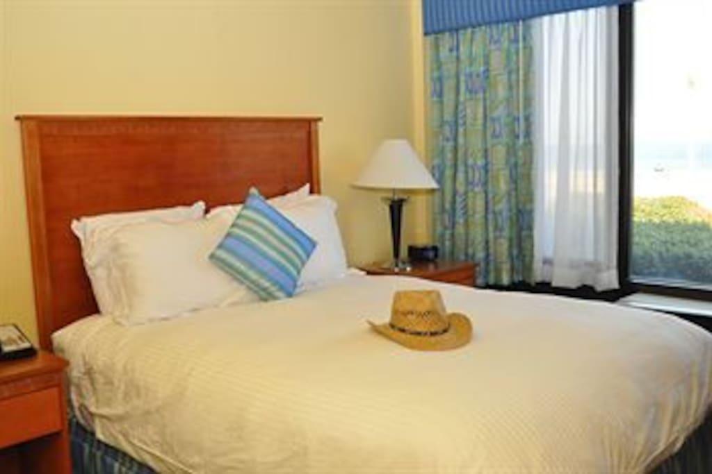 Fantastic Oceanfront Condo Indoor Pool Beach Condominiums For Rent In Virginia Beach