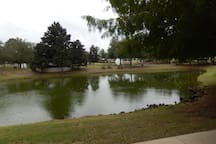 Pond right outside back Porch