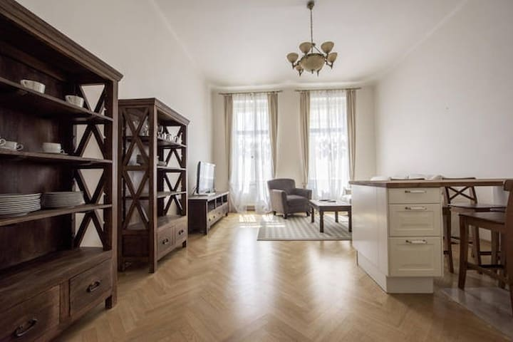 Old Town Apartment Dušní - Prague
